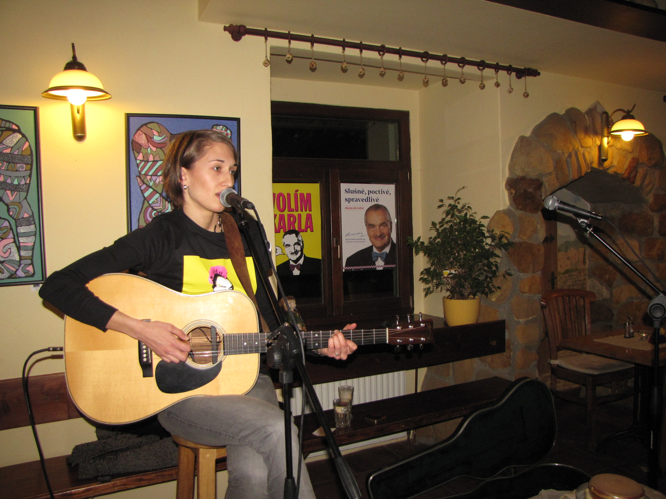 Eliška Ptáčková byla ozdobou večera věnovaného výborné muzice, milé společnosti a skvělému kandidátovi prezidentských voleb Karlovi Schwarzenbergovi.